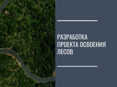 Разработка проекта освоения лесов