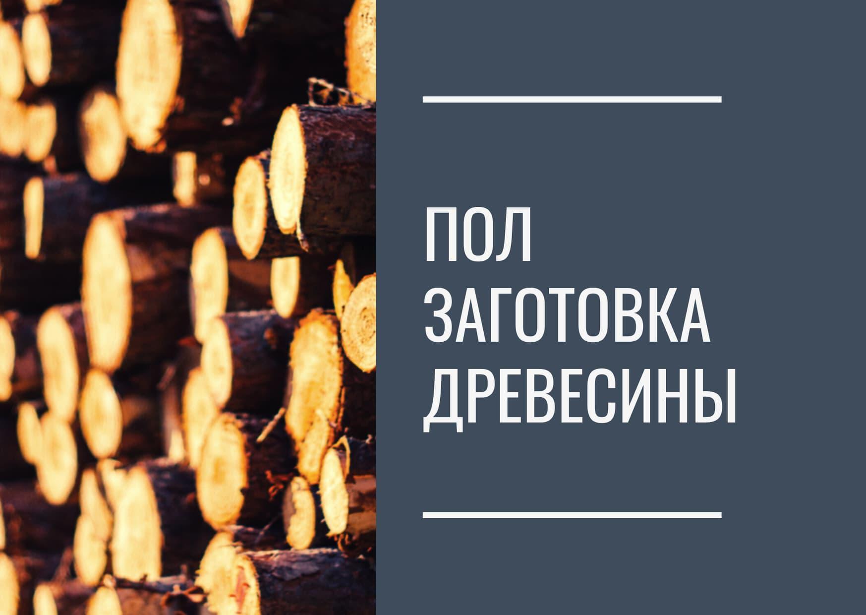 Проект освоения лесов заготовка древесины