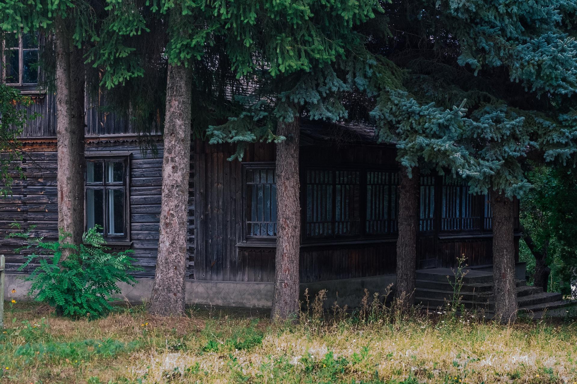 """Оформление лесного участка """"под ключ"""""""