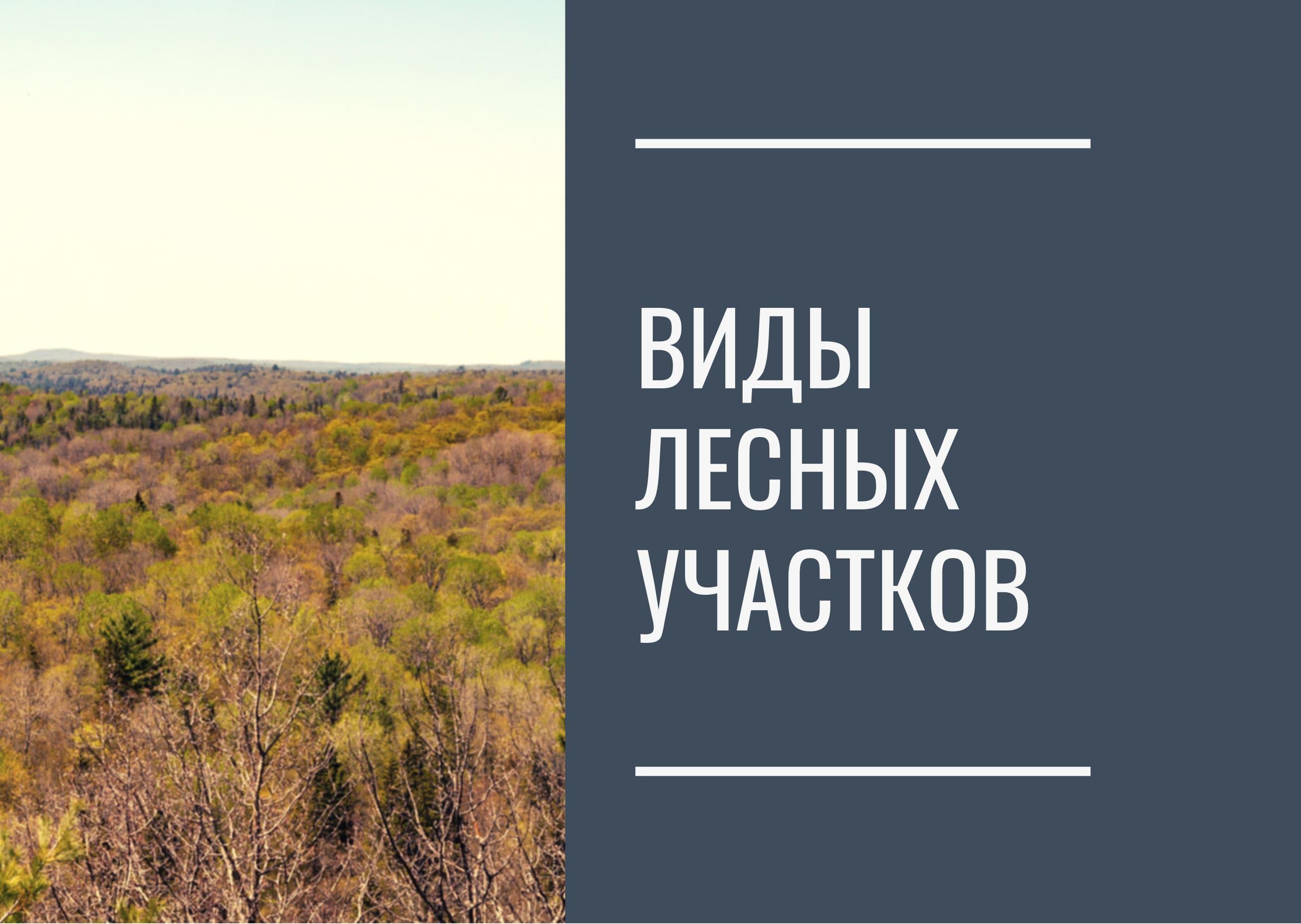 Виды лесных участков