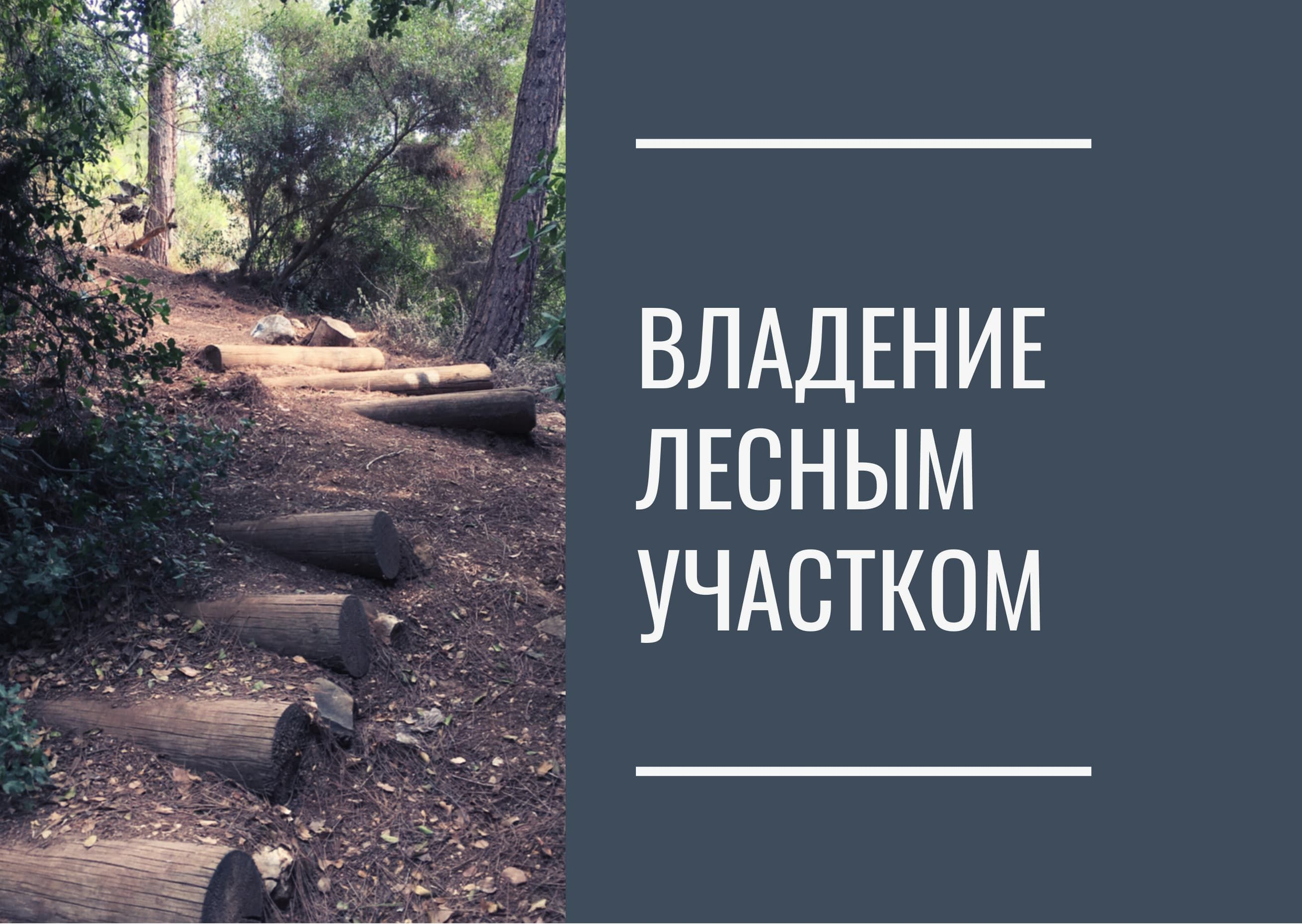 Владение лесным участком